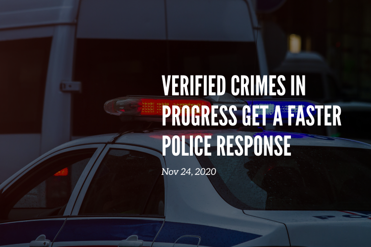 Apprehensions Work: Why stopping crimes in progress matters